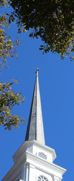Steeple in narrow vertical format.